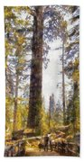 Walking Small In The Tall Forest Beach Towel
