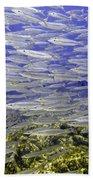 Wall Of Silver Fish Beach Towel
