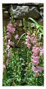 Wall Of Snapdragons Beach Towel