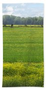 Wandering Hwy 51 Mississippi Beach Towel