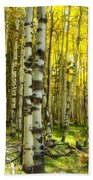 Wandering In The Woods  Beach Towel