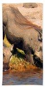 Warthog Family Beach Towel