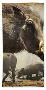 Warthog Profile Beach Towel by Ronel Broderick