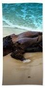 Washed Ashore Beach Towel