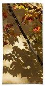 Washington D C Facades - Dupont Circle Neighborhood - Playing With Shadows Beach Sheet