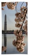 Washington Monument Framed By Blossoms Beach Towel