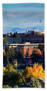 Washington State University In Autumn Beach Towel by David Patterson