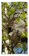 Wasps' Nest Beach Towel