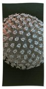 Water Bear Egg Beach Towel by Eye of Science and Science Source