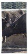 Water Buffalo - 2 Beach Towel