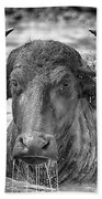 Water Buffalo-black And White Beach Towel