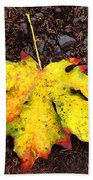 Water Colored Leaf - Autumn Beach Towel