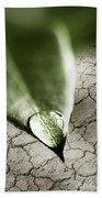 Water Drop On Green Leaf Beach Sheet