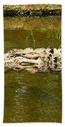 Water Gator Beach Towel