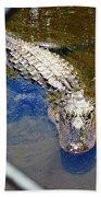 Water Hole Gator Beach Towel