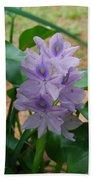 Water Hyacinth Beach Towel