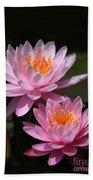 Water Lilies Love The Sun Beach Towel by Sabrina L Ryan