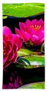 Water Lily 2014-12 Beach Towel