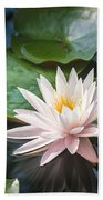 Water Lily And Lily Pads Beach Towel