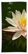 Water Lily And Pad Beach Towel