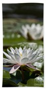 Water Lily Pictures 70 Beach Towel