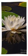 Water Lily Pictures 81 Beach Towel