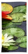 Water Lily Pond In Autumn Beach Towel