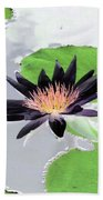 Water Lily - Purple Power - Photopower 1376 Beach Towel