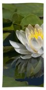 Water Lily Reflection Beach Towel