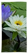 Water Lily Serenity Beach Towel
