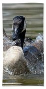 Water Logged - Canadian Goose Beach Towel