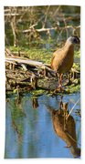 Water Rail Reflection Beach Towel