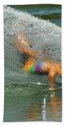 Water Skiing 5 Magic Of Water Beach Towel
