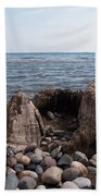 Water Stump Beach Towel
