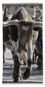 Watercolor Longhorns Beach Towel