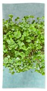 Watercress Beach Towel