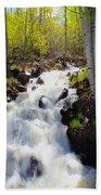 Waterfall By The Aspens Beach Towel