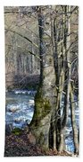 Waterfall In Winter Beach Towel