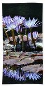 Waterlilies Beach Sheet