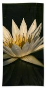 Waterlilly 7 Beach Towel