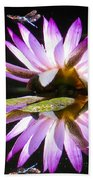 Waterlily And Dragonfly Beach Towel