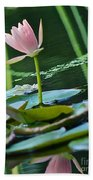 Waterlily Whimsy Beach Towel