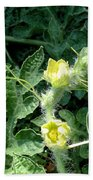 Watermelon Flowers And Vine Beach Towel