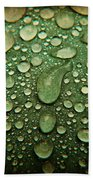 Raindrops On Watermelon Rind Beach Towel