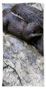 We Otter Snuggle Up Beach Towel