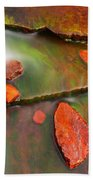 Weano Gorge - Karijini Np 2am-111702 Beach Towel