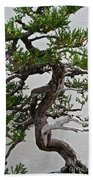 Weathered Bonsai Beach Towel
