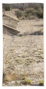 Weathered Remains Beach Towel