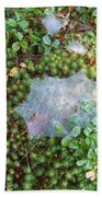Web In Moss Beach Towel