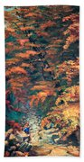 Webster's Falls Beach Towel